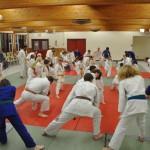 Judo XMAS Party 2015 3